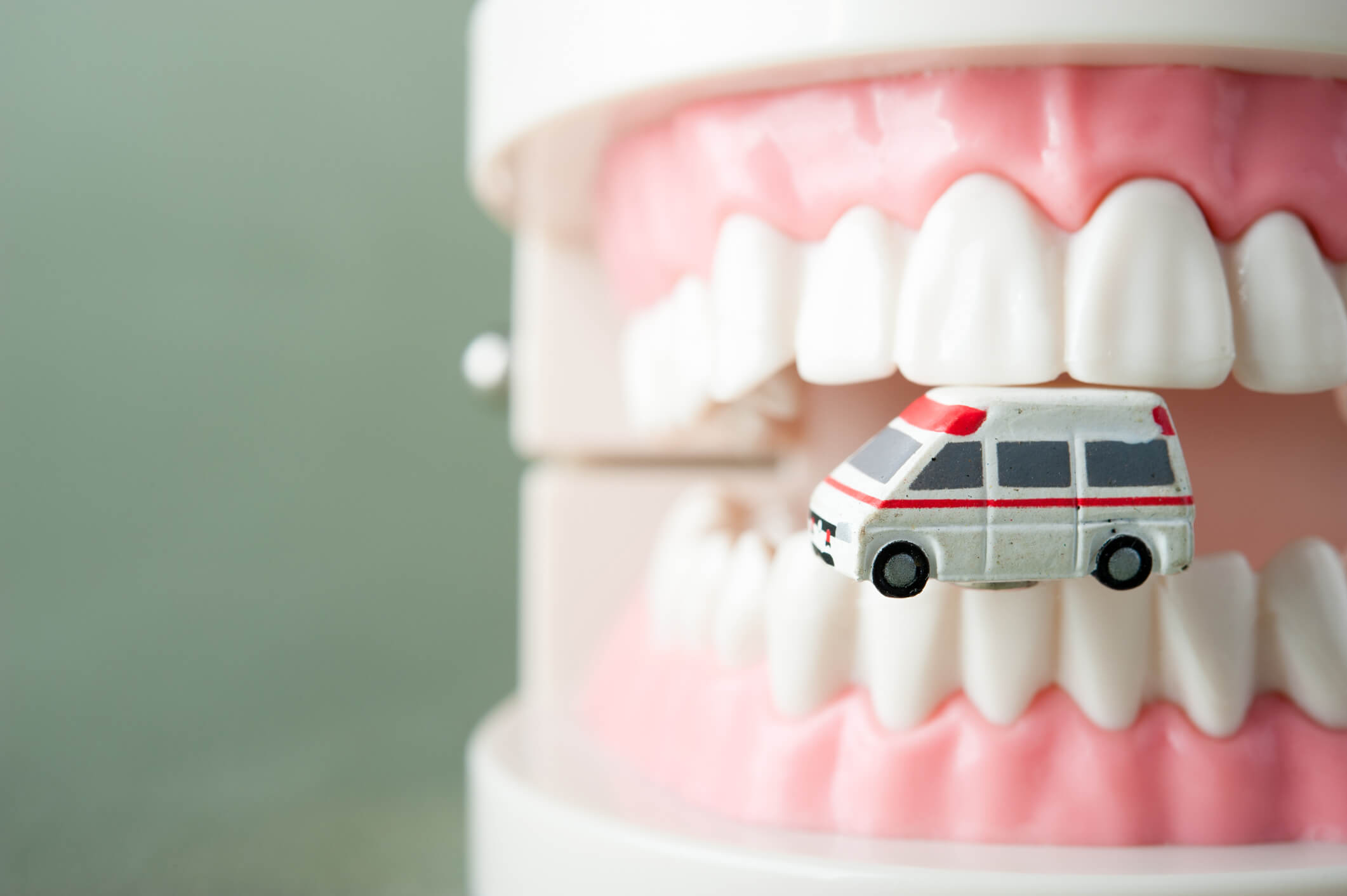Model of teeth and miniature ambulance